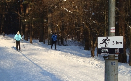 slidinėjimo-trasa vingio parke